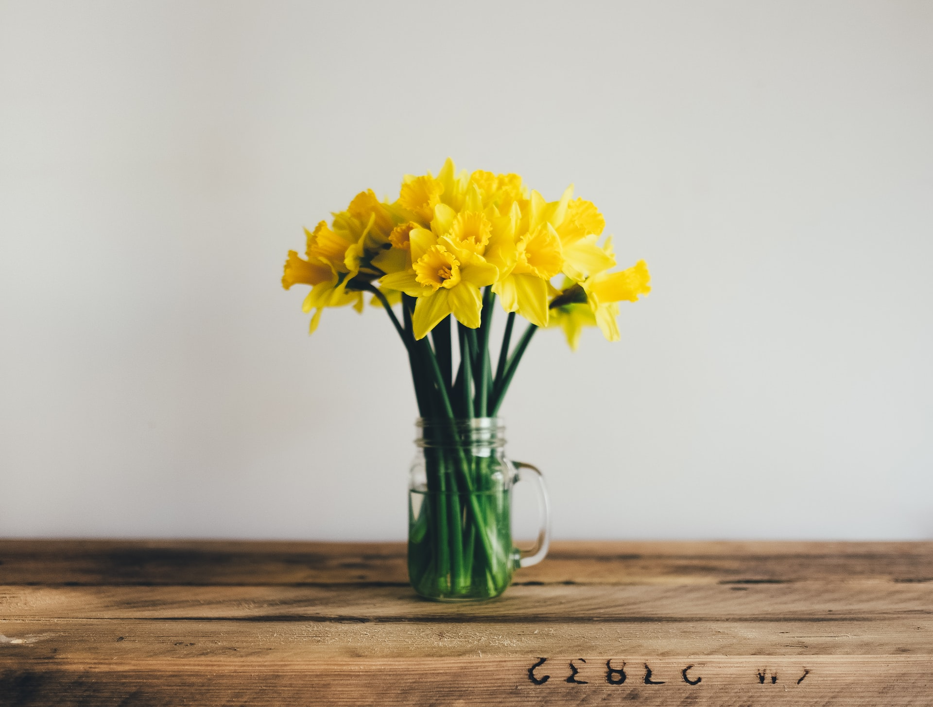 Bunch of Daffodils in a vase on wooden table.